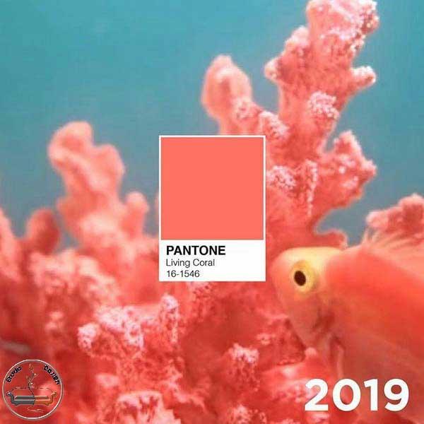 رنگ سال 2019
