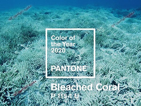رنگ سال ۲۰۲۰