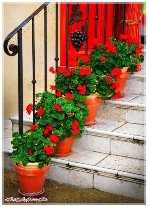 تزیین خانه با گلدان