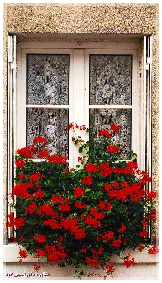 تزیین پنجره با گلدان گل سفالی