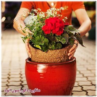 گلدان سفالی بزرگ