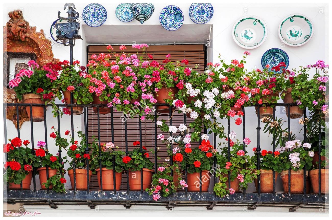 تزیین بالکن با گلدان گل