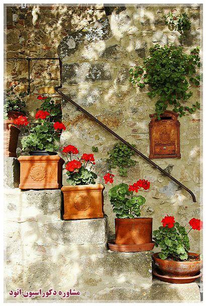 تزیین حیاط با گلدان گل