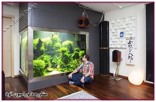 home aquarium big